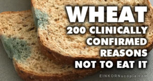 200 Reasons not to eat wheat