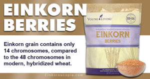 Young Living Einkorn Berries
