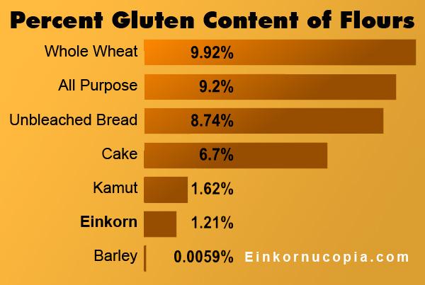 Grain Gluten Comparison Chart