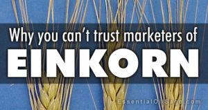Can't Trust Einkorn