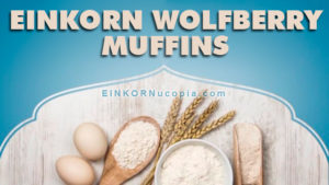 Recipe: Einkorn Wolfberry Muffins-recipe