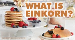 What is Einkorn?